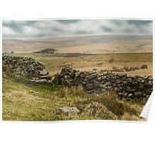 Dartmoor Vista Poster