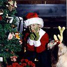 A Grinch Christmas by Lolabud