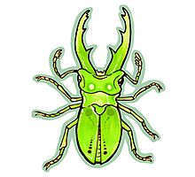 Green Stag Beetle Photographic Print