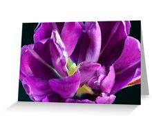 Deepness of Nature Greeting Card