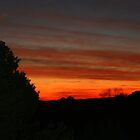 Fiery Sunset in Santa Fe by Laurel Talabere
