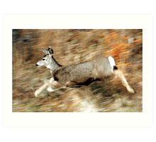 Leaping Mule Deer Art Print