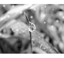 a single rain drop Photographic Print