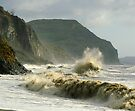 Winter morning on Charmouth Beach  by SWEEPER