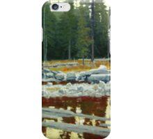 Almost Twilight iPhone Case/Skin