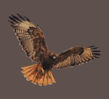 Red- Tailed Hawk 5 Tee by Marvin Collins