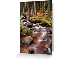 Dying Forest Greeting Card