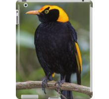 Regent Bower Bird iPad Case/Skin
