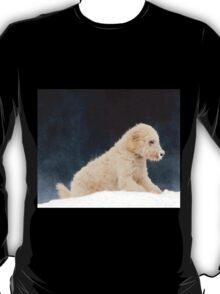 Cold Nose T-Shirt