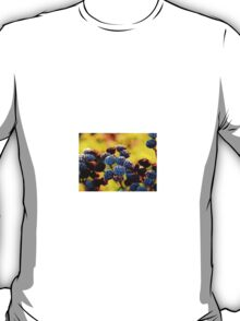 Candy Coated T-Shirt