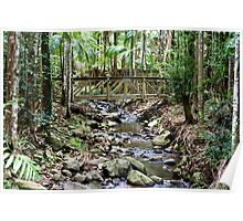 Buderim Forest Park Poster