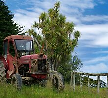 Retired red tractor by Norman Repacholi