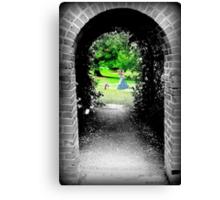 Through to Wonderland Canvas Print