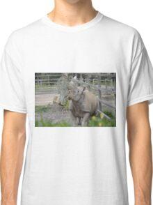 Black Rhinoceros. Classic T-Shirt