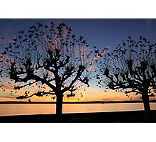 Sunset at Meersburg - Lake Constance Photographic Print