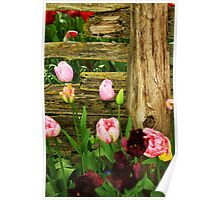 Fence & Flowers Poster