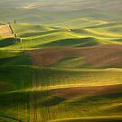Green Ocean by Olga Zvereva