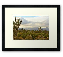 Wee Thump Wilderness, NV Framed Print