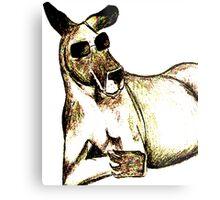 Cool Kangaroo (Colour) Metal Print