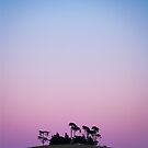 sunset trees by Robert  Taylor