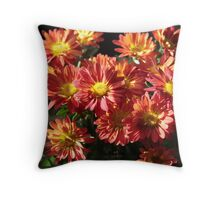 Playing with Sun Throw Pillow
