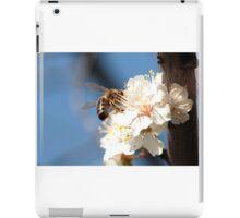 fruit color iPad Case/Skin