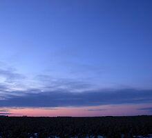Good Morning Manitoba! by Stephen Thomas