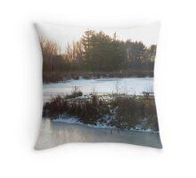 Gorman Nature Center Conservation Pond Throw Pillow