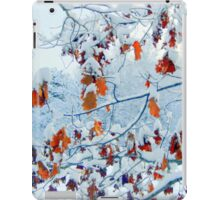 Hang in there iPad Case/Skin