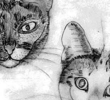 My pencil drawing of Lillan and Grenadine - all products Sticker
