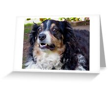 Buddy says what do you mean I look Like Louie the 14th Greeting Card