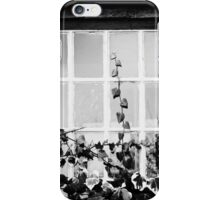 Window and ivy. iPhone Case/Skin