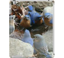 Flock Around, Everybody!  iPad Case/Skin