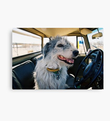 Neds Driving Canvas Print