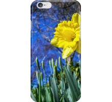 Happy St David's Day iPhone Case/Skin
