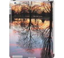 Sunset over the River Thames iPad Case/Skin