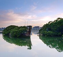 Reclaimed - Homebush Bay, NSW by Malcolm Katon