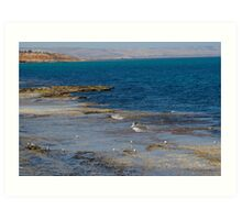 Port Noarlunga reef Art Print