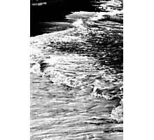 living shore Photographic Print