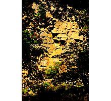 planting stones Photographic Print