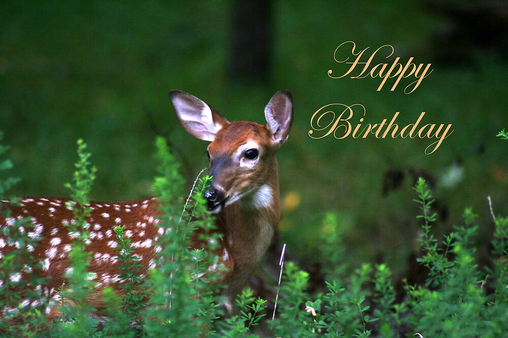 Quot Happy Birthday Deer Quot By Cardlady Redbubble