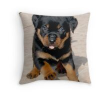 Run Rottie, Run Rottie, Run Run Run....... Throw Pillow