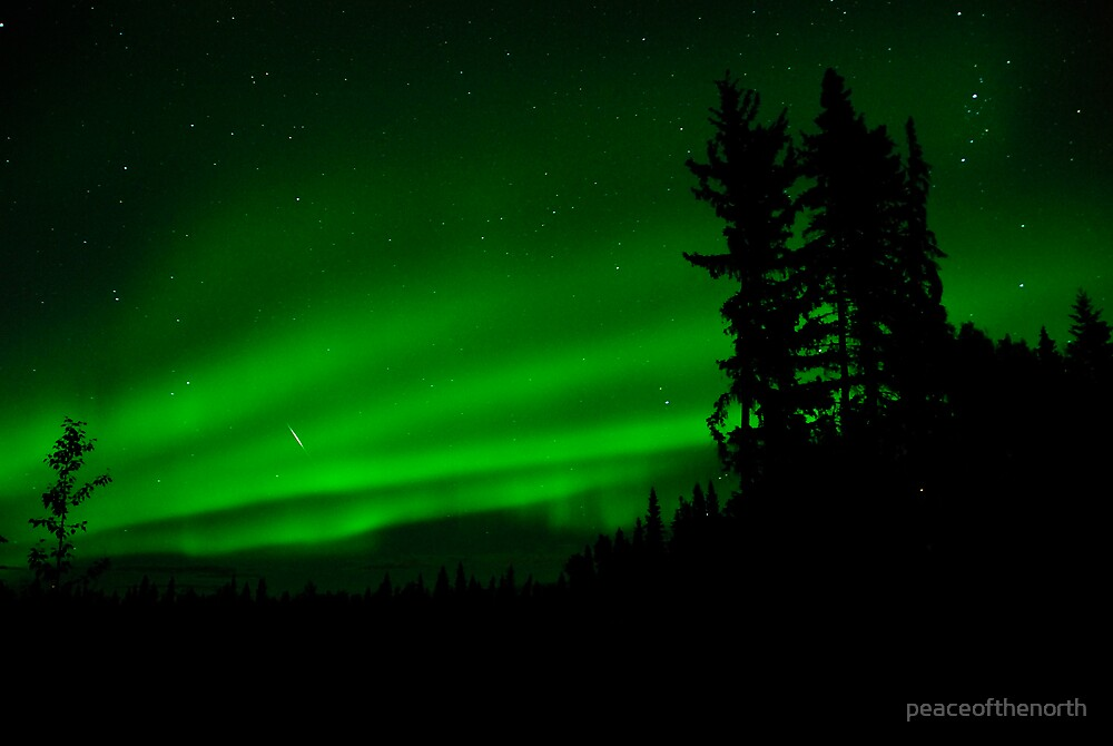 Auroras and a Tiny Weny Shooting Star by peaceofthenorth