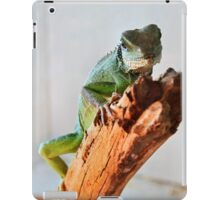 Reached the top iPad Case/Skin