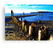 Picnic Point Pilings 2 Canvas Print