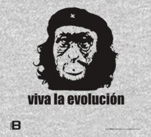 Viva La Evolución by David Avatara