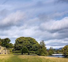 Chatsworth Park by Steven  Lee