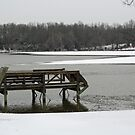 Baltz Lake in the snow by Susan Blevins