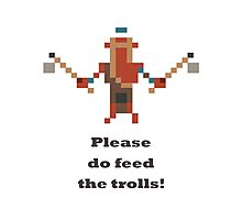 Troll Warlord - Please do feed the trolls Photographic Print