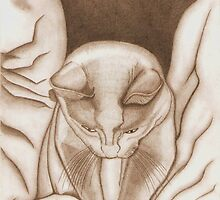 Pounce (pencil) by Deborah Duvall